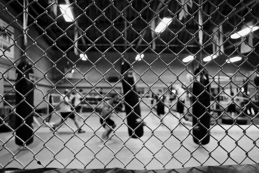 Inside the Octagon - Dark Horse Gym, San Jose, California